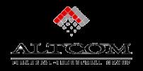 Altcom 2010 год