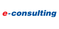 E-consulting 2011 год