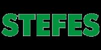 STEFES 2017 год
