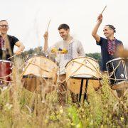 drum division в поле